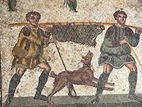 Первые собаки появились в Юго-Восточной Азии