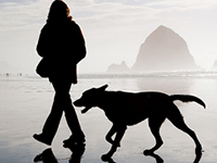 Ученые: сердца собак и их хозяев бьются в унисон