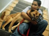 психология собаки потребности и мотивация